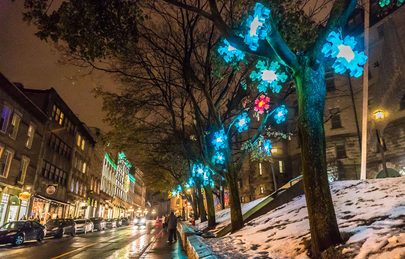 Christmas Old Quebec City Shopping Tourist Attraction  Architecture Bare Tree Branch Building Exterior Built Structure City Cold Temperature Decoration Destination Evening Illuminated Nature Night Outdoors Road Sky Snow Street Street Light Tree Winter Holiday Moments