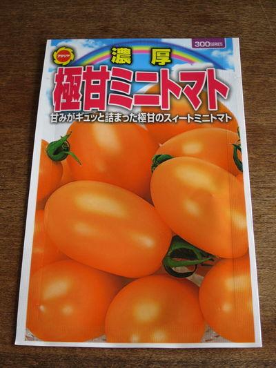今夏の挑戦 水耕栽培 ミニトマト