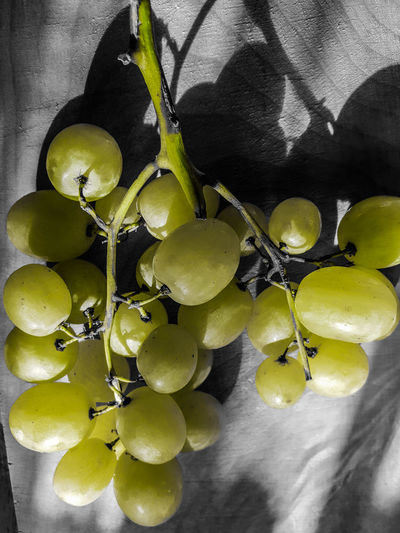 Bunch of grapes Healthy Snack Centered Perspective Sweet Centered Healthy Fitness Vitamins Copy Space Marketing Close Up Zoom In Front Hanging Vintner Wine-growing Wine moments Wine Tasting Winemaking Seedless Grape Fruit Close-up Food And Drink Grape Vineyard Vine Winery Plantation Bunch Juicy Vine - Plant