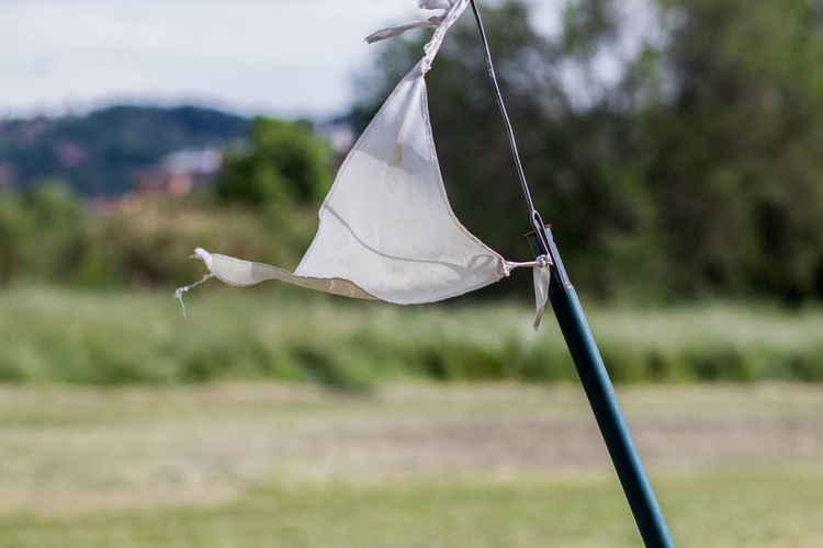 Close-up of white leaf hanging on rope