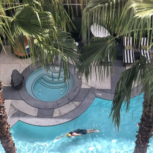 When in Las Vegas Water Swimming Pool Palm Tree Tourist Resort Leisure Activity Swimming Vacations Real People Day Outdoors Adult Sea People Lifestyles Tree Adults Only One Person Luxury Nature Luxury Hotel