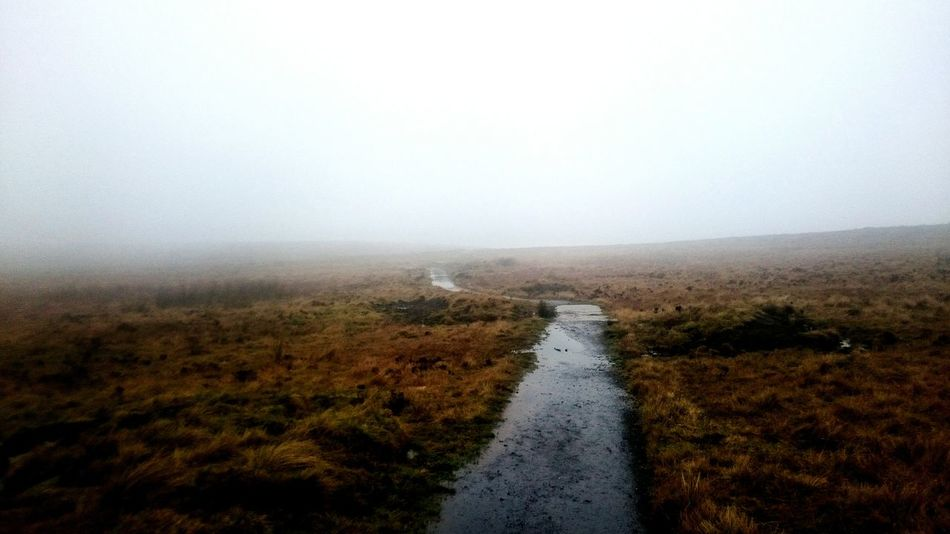 Landscape The Way Forward Tranquility Road Day Fog Rural Scene Nature Outdoors No People Tranquil Scene Scenics Beauty In Nature Black Mountain Belfast
