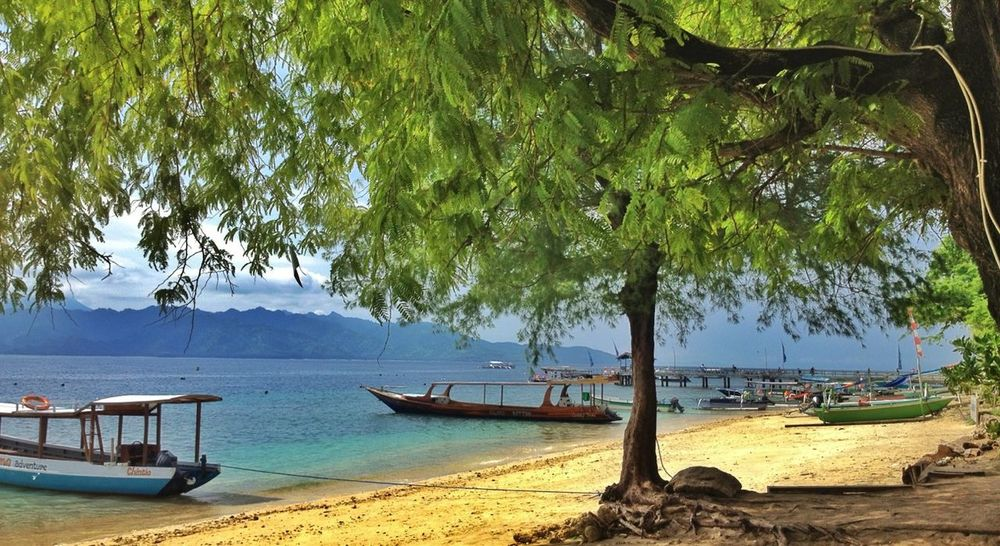 Good Morning everyones,Back to Bali..
