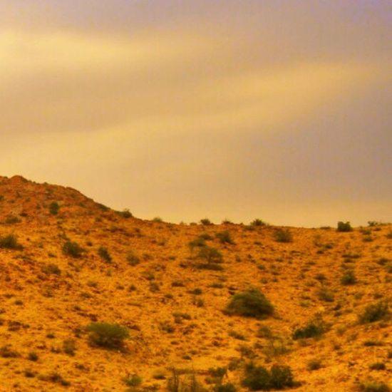 الغروب اليوم في الطائف sunset , cooltowarm , light , 3photos , follow