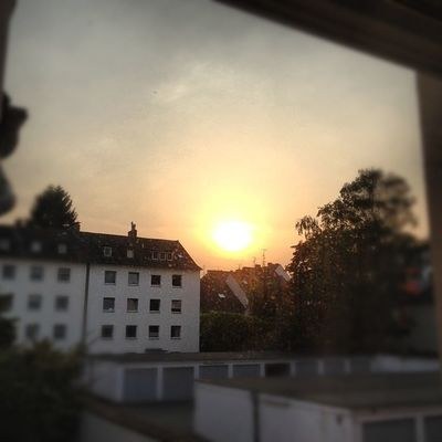 #evening #sun #sunshine #light #nrw #innenhof #pictureoftheday #instamood #sunrise #emotion #yellow #orange #rheydt #mönchengladbach #mg Emotion Instamood MG  Mönchengladbach Pictureoftheday Rheydt Innenhof Sun Sunshine Light Sunrise Evening Orange NRW Yellow