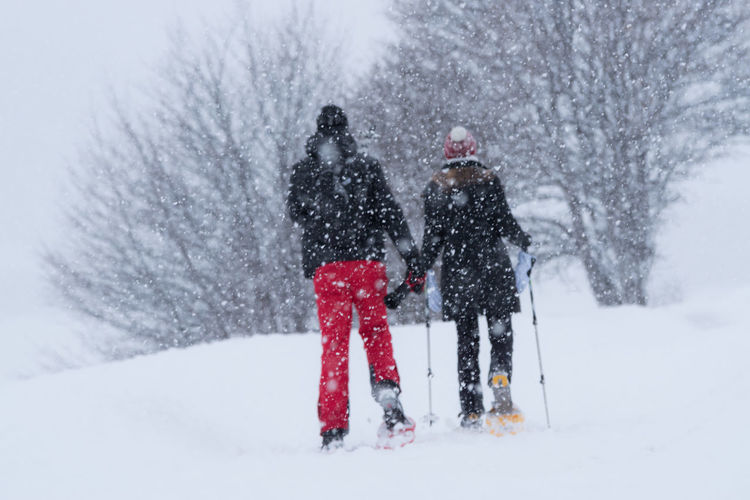 Rear View Of People Skiing During Snowfall
