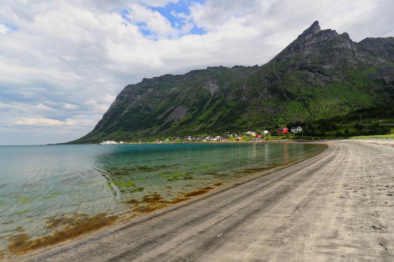 Steinfjord wild