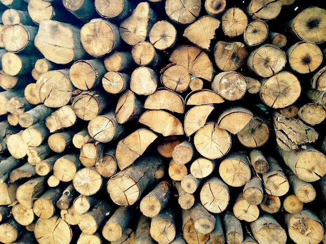 Firewood Log Timber Stack Woodpile Forestry Industry Heap Wood Abundance Lumber Industry Backgrounds Full Frame Wood - Material Deforestation Textured  Fuel And Power Generation No People Day Close-up EyeEmNewHere