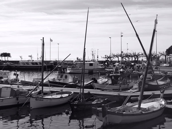 Boat Calm Day Harbor Nautical Vessel Sea Water Waterfront Monochrome Photography
