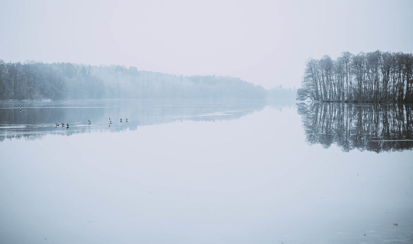 Tranquility Reflection Tranquil Scene Water Lake Beauty In Nature Scenics - Nature Waterfront No People Sky Cold Temperature Fog Day Non-urban Scene Nature Winter Tree Idyllic Outdoors Reflection Lake Poland Poland Eyeem Kaszuby Wildlife Morning