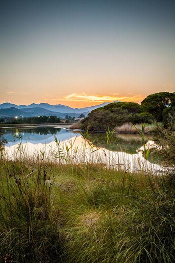 Sunset & nature