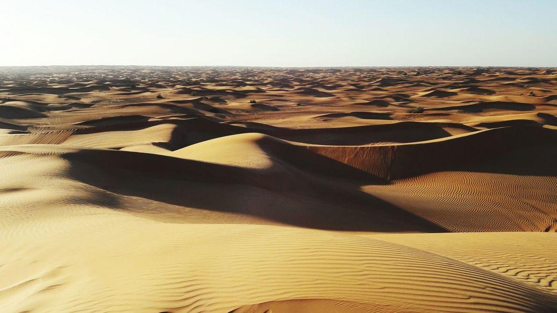 Desert Days Desert Sand Dune Sand Dubai Beauty In Nature
