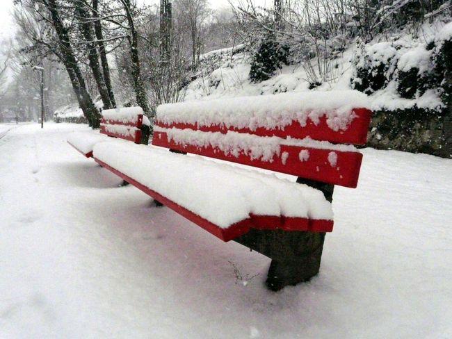 Winter Snow Ulm Danube