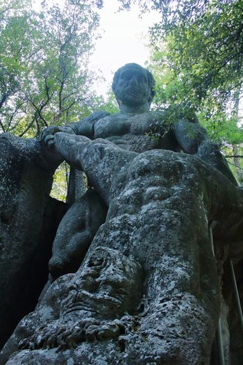 Bomarzo parco mostri ercole e caco EyeEm Art Passion Beautiful Tourist Travel Life Relax Power Park Monster Statue Stone Hercules Cacus EyeEm Selects Eyey4photgraphy EyeEm Gallery Tree Sky Scenics Visiting Tranquility