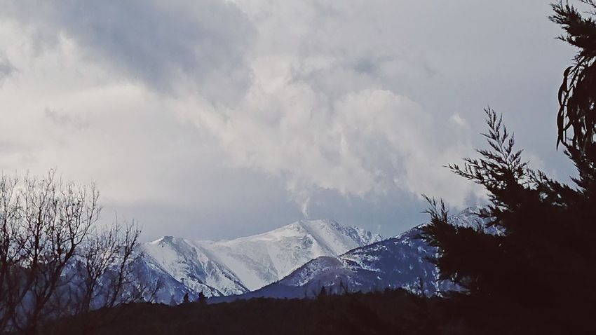 Waking up to this Canigou Canigou Mountain Catalonia France EyeEm Selects Wakinguptothis Gray Sky Atmospheric Mood Snow Mountain Winter Tree Cold Temperature Pinaceae Nature Beauty In Nature No People Outdoors Mountain Range Scenics Cloud - Sky