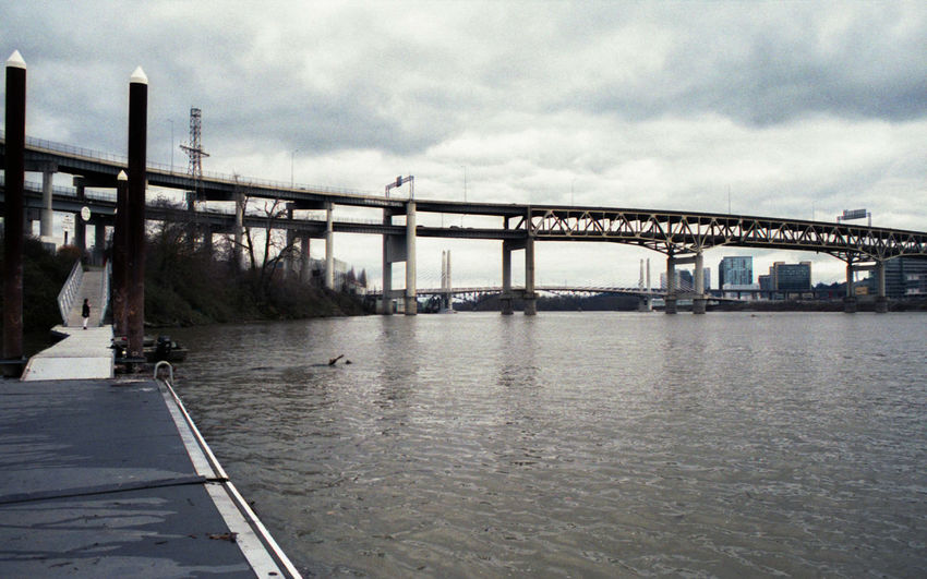 the Willamette Pdx Film Photography Nikon 35mm City Water Horizon Bridge - Man Made Structure Cityscape River Summer Sky