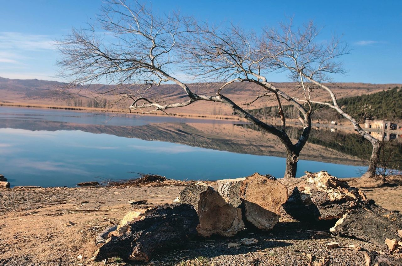 bare tree, water, tree, beauty in nature, scenics, lake, nature, tranquil scene, outdoors, tranquility, day, sky, no people, branch, landscape, mountain