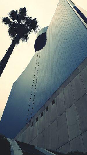 World Trade Center Architecture World Trade Center Cdmx Mexico
