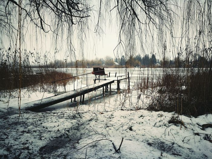Secondpicture Lake Hungary Snow Iced Lake Nature Landscape Steg Beautifulnature