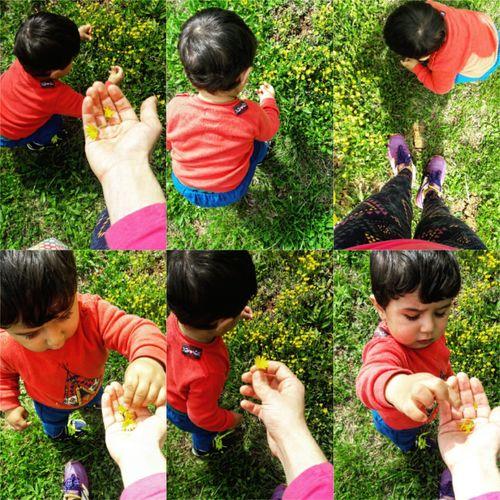 Flowers Bahar Oğluşum :) Spring Spring Flowers Spring Time Spring 2016 Myson Sarıpapatya Sunshine Smile ✌ Self Motherandson  Anneoğul