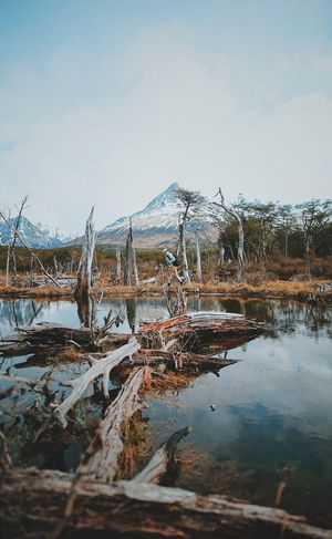 Water Sky Tranquility Mountain Nature Beauty In Nature Scenics - Nature Plant Tranquil Scene Day No People Reflection Lake Non-urban Scene Tree Cold Temperature Outdoors Winter