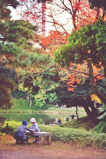 Man sitting on bench in park