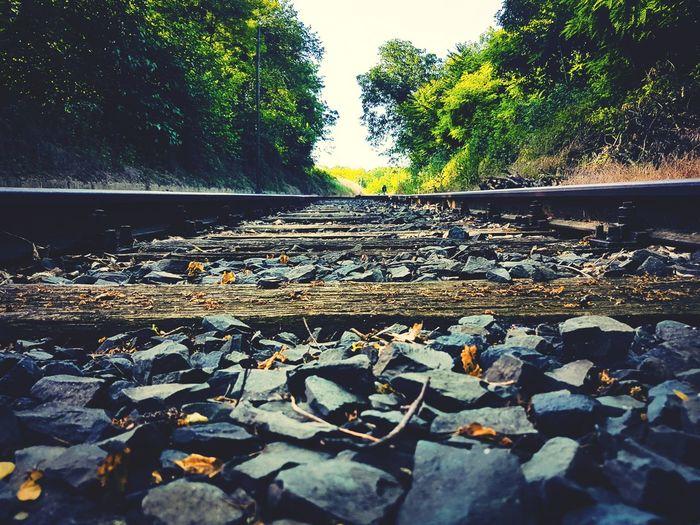 Train Train Tracks Stone Train Station Sunlight No People Tree Water Sky Close-up Stone - Object Stepping Stone Coast Driftwood Rock - Object Stack Rock
