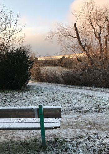 Prague Nature Frozen Trees Blue Sky Lonely Bench Exploring Outdoors No People Travel Tranquility Beauty In Nature