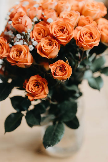 No People High Angle View Flower Arrangement Bouquet Arrangement Inflorescence Indoors  Flower Head Vulnerability  Beauty In Nature Close-up Rosé Rose - Flower Petal Flower Flowering Plant Bunch Of Flowers Plant Fragility Freshness Nature