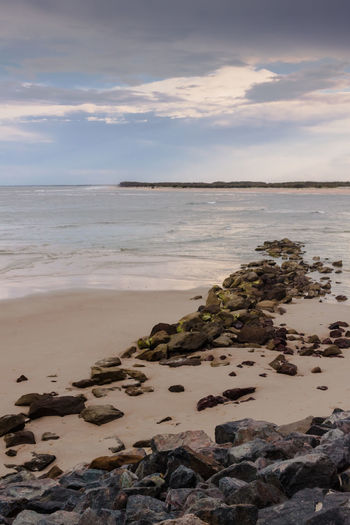 Peaceful Beach In Caloundra Australia Beach Caloundra Coastline Horizon Over Water Ocean Ocean View Outdoors Pacific Queensland Remote Sand Sea Seascape Shore Tranquil Scene Vacation Vacations Water Wave