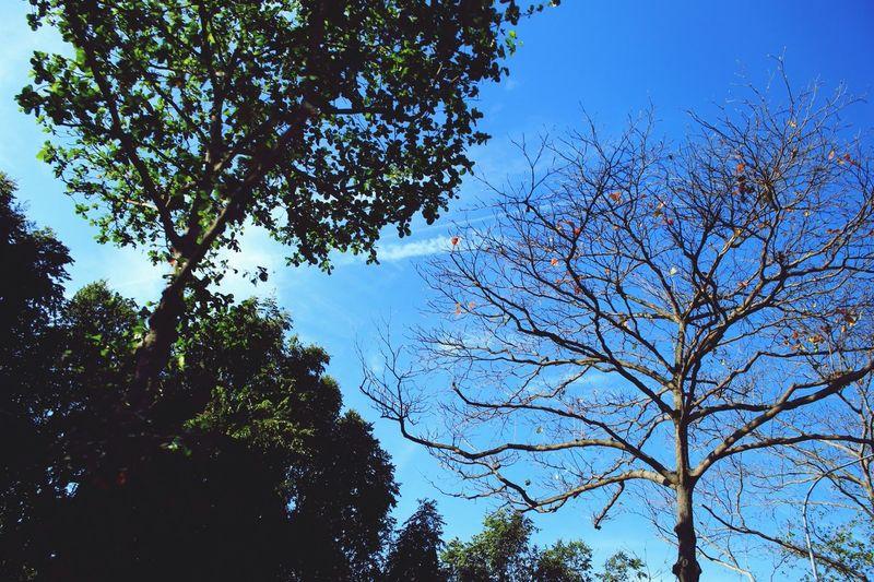 Nature Clouds And Sky EyeEm Best Shots Landscape