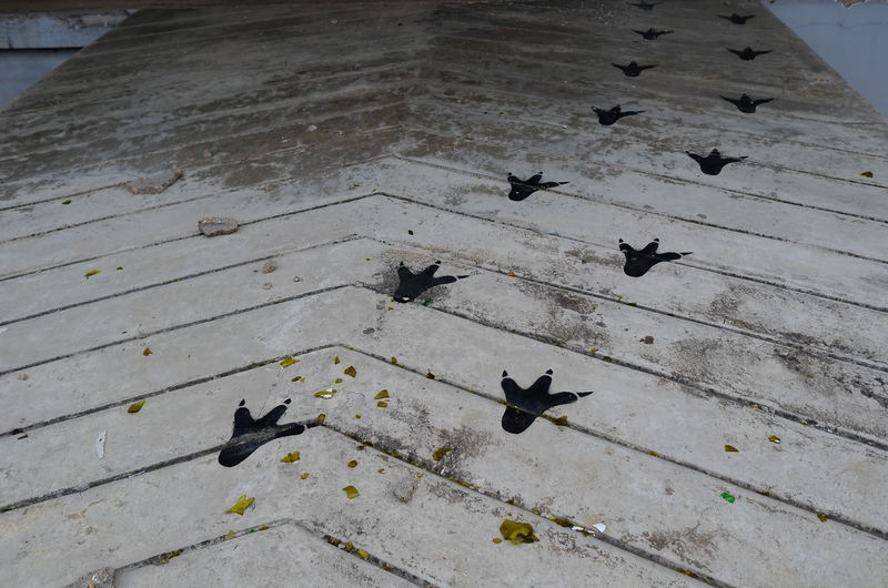 High Angle View Of Bird Footprints Painted On Boardwalk