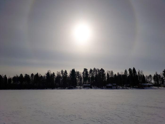 Sun with