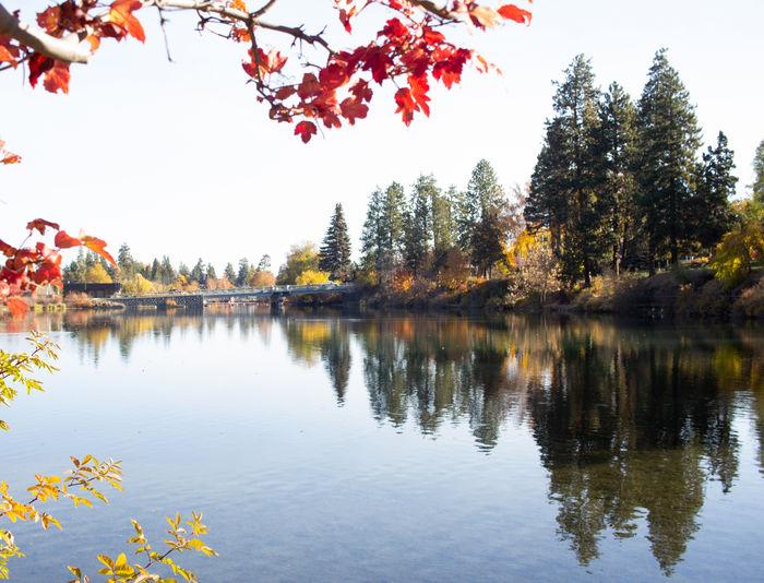 Mirror Pond