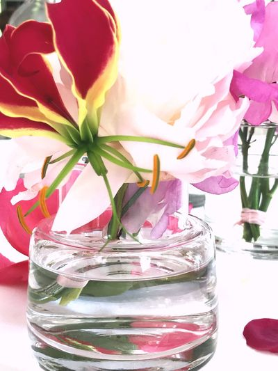 Flowers on a table Flower Flowering Plant Plant Nature No People Vase Glass - Material Freshness Close-up Glass Water Table Pink Color Flower Arrangement Flower Head Beauty In Nature Jar Leaf