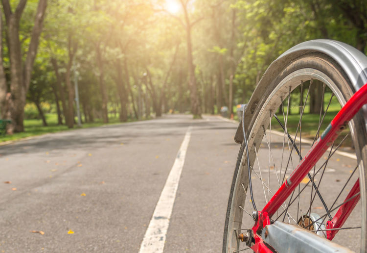 In the morning, cycling for exercise makes you healthy. park, bicycle lane in park, wheel of bicycle on road. Ride a bike on a holiday. Morning Bicycle Bike City Day Direction Focus On Foreground Land Vehicle Mode Of Transportation Nature No People Outdoors Plant Red Ride Road Street Sunlight The Way Forward Tire Transportation Tree Wheel