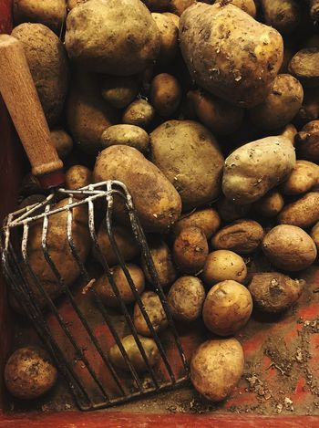 Halatargowa Wrocław Freshness Food Close-up Group Of Objects Day Brown fresh potatoes