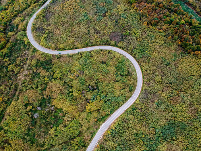 Aerial View Beauty In Nature Curve Day Drone  Eyesight Forest High Angle View Landscape Mountain Road Nature No People Outdoors Plant Road Road Trip Scenics Tranquility Tree Winding Road