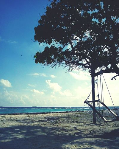 Tree Swing Beach Island