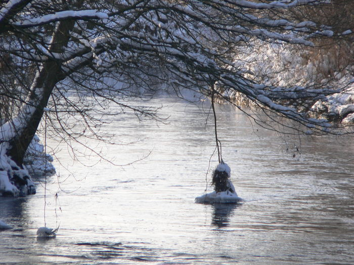 Shades Of Winter Bare Tree Beauty In Nature Branch Day Nature Nautical Vessel No People Outdoors Rotenburg An Der Wümme Sea Sky Tranquility Tree Water Waterfront Winter Trees Winter Wonderland Wintertime Wümme Wümmewiesen Rotenburg Rotenburg An Der Wümme
