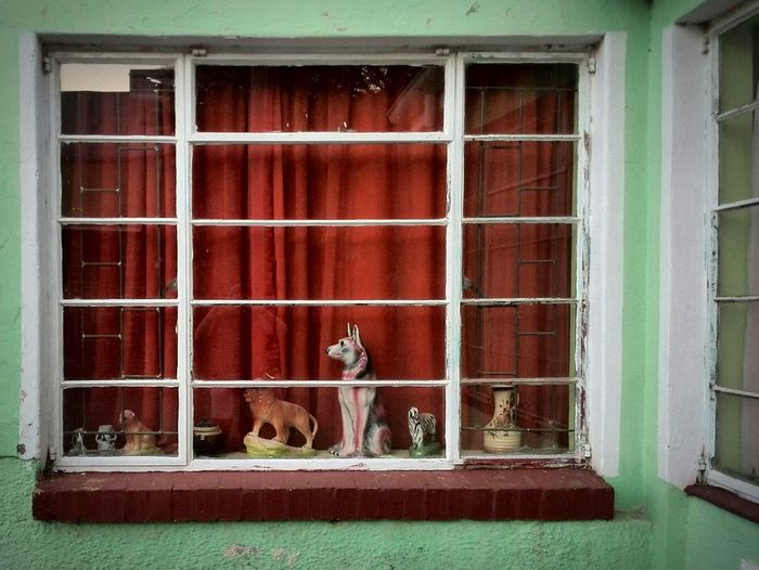 How much is that doggy in the window? Aberdeen Kleinkaroo Karoo Karoospaces Southafrica Superretro Home Is Where The Art Is