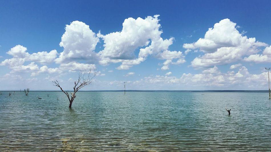 Presa Vicente Guerrero en Padilla, Tamaulipas, México. Sky Water Scenics Nature Outdoors Horizon Over Water