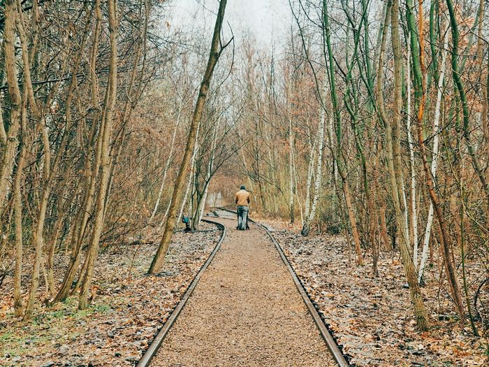 Rear view of man walking on railroad track amidst bare trees in park