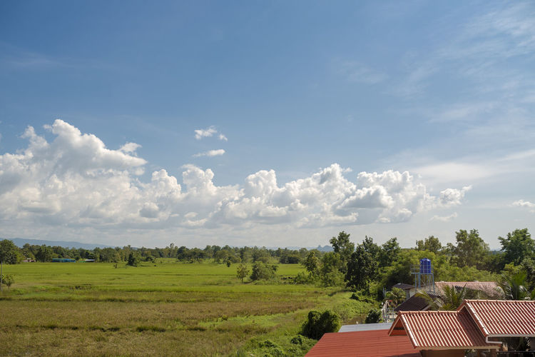 Scenic view of trees and houses against sky