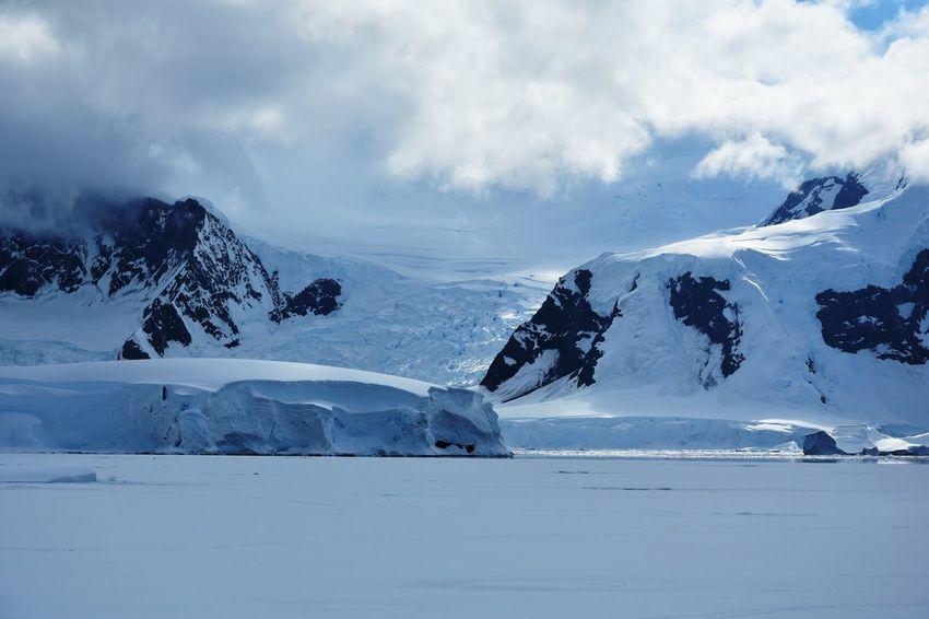 Antarctic Antarctic Peninsula Antarctica Frozen Glacier Ice Iceberg Icebergs Landscape Mountain Mountains Snow Winter Wonderland