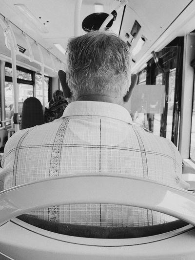 Bus. // Rear