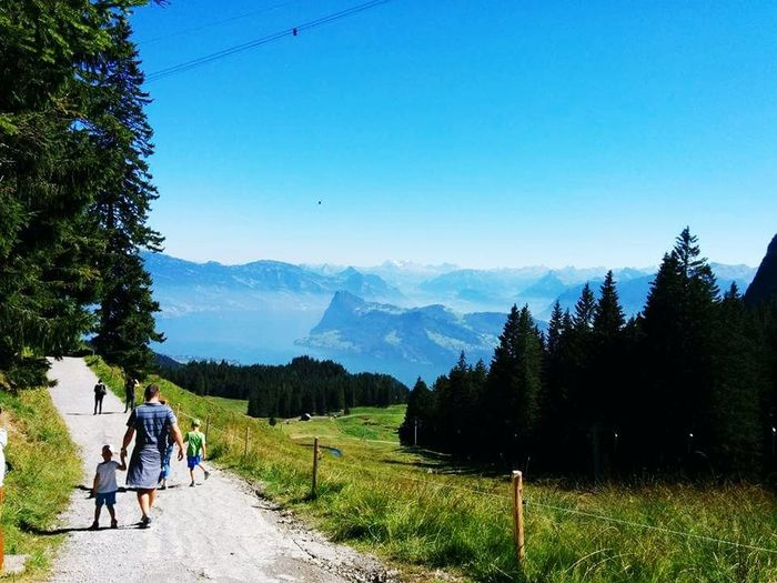 Mt. Pilatus. Swiss heaven! Sky Nature Mountain Range Clear Sky Outdoors Day Vacations Walking Mountain Tree Leisure Activity Adventure First Eyeem Photo