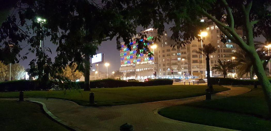 Tree City Illuminated Christmas Lights Park - Man Made Space Lighting Equipment Street Light Sky Grass