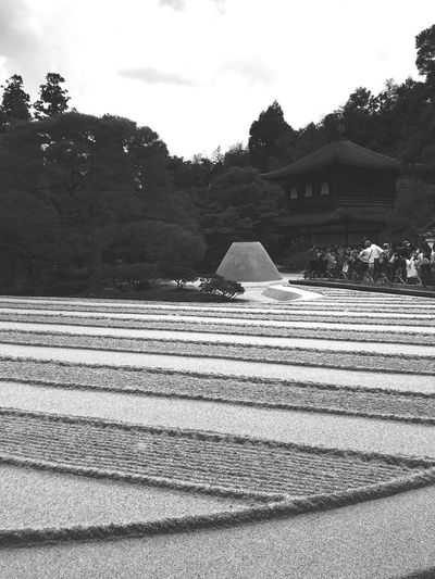 Temple of the Silver Pavilion Japan Kyoto Ginkakuji Sightseeing Visit Built Structure Architecture Building Exterior Tree