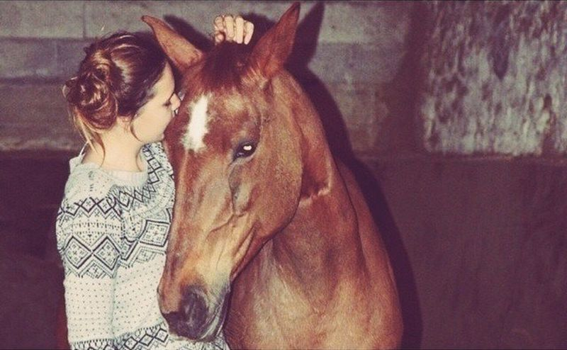 U n c o n d i t i o n a l l y .✨ Horse Cheval Idylle Forever 3 Ans D'amour A Jamais To The Moon And Back